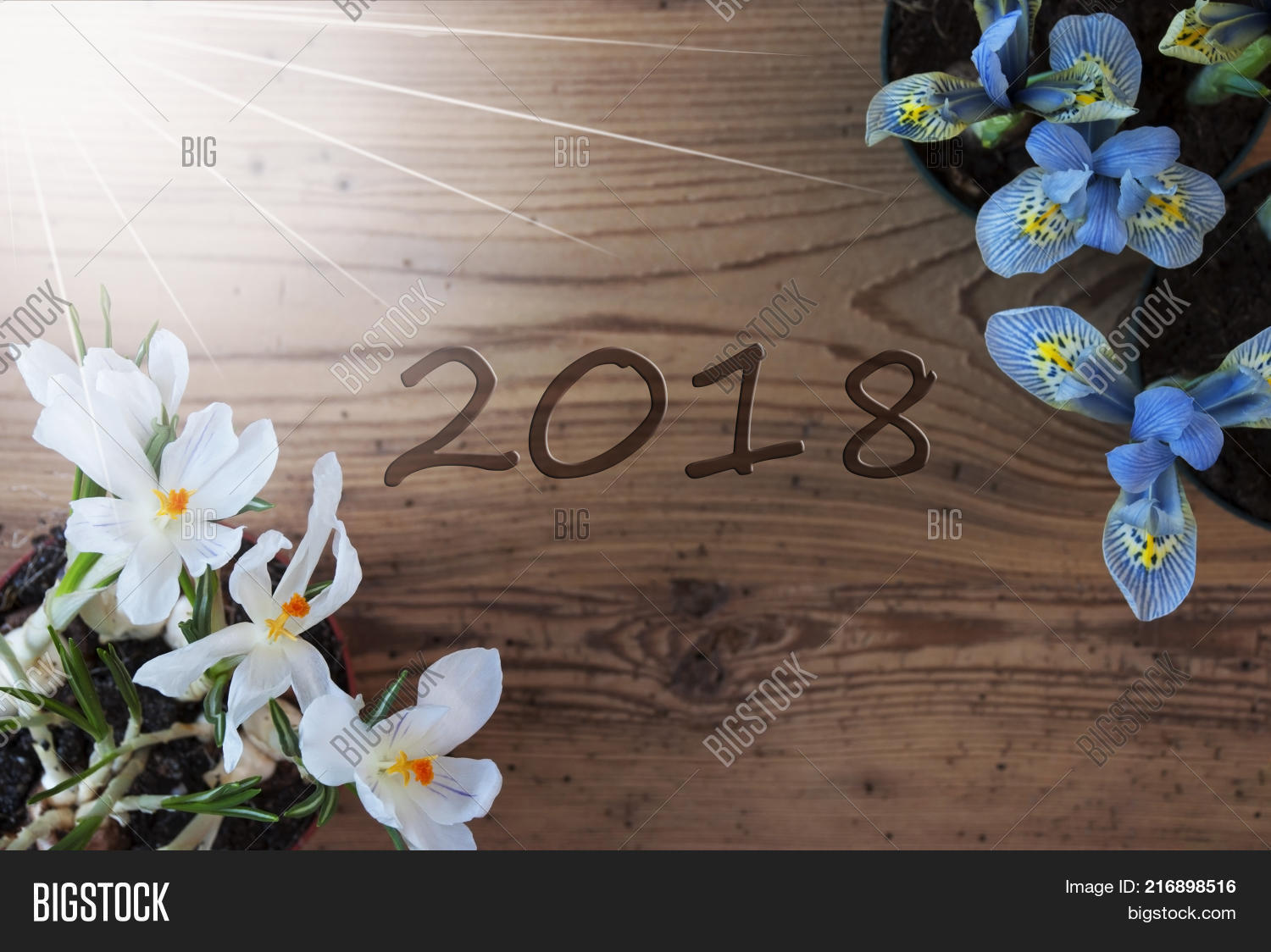 Wooden Background Text Image Photo Free Trial Bigstock