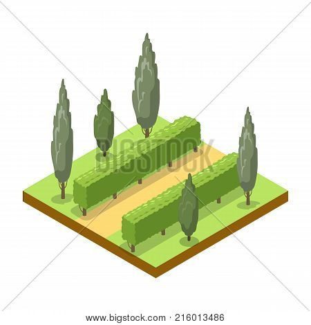 Park alley with trees isometric 3D icon. Public park decorative plant and green grass vector illustration. Nature map element for summer parkland landscape design.