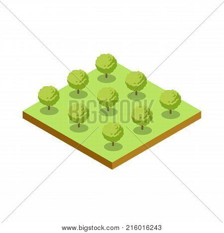 Green bushes isometric 3D icon. Public park plant and green grass vector illustration. Nature map element for summer parkland landscape design.