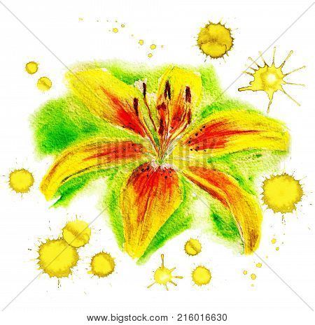 Watercolor Image Of Yellow Lily With Paint Blots On White Background