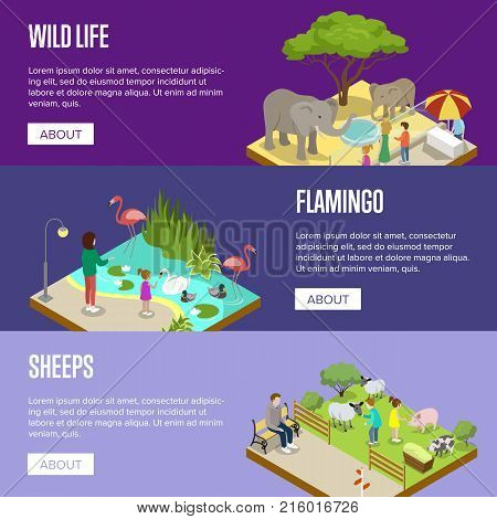 Public zoo with wild animals and visitors isometric posters. People near cages with elephants, flamingos and sheeps vector illustration. Zoo landscape elements for design, wild life concept.