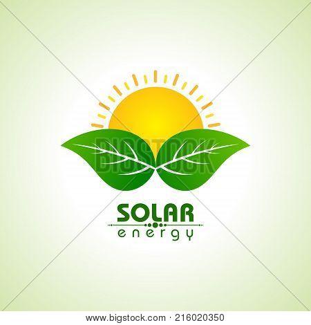 Solar Energy Concept with leaf and sun stock vector