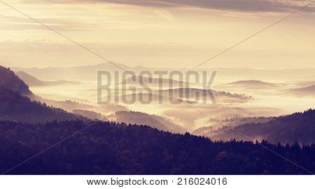 Magnificent Heavy Mist In Landscape. Autumn Creamy Fog In Landscape.
