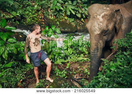 Young traveler with friendly elephant in tropical rainforest in Chiang Mai Province Thailand.