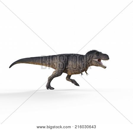 3d render dinosaur - trex white on white background. This is a 3d render illustration