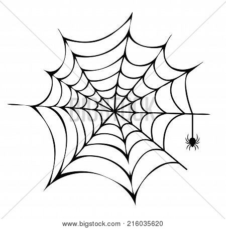 Spider building his net icon isolated on white background. Vector illustration with big black scary arthropod working on his trap