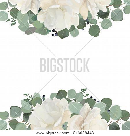 Floral card design with garden white creamy peony Rose flower silver Eucalyptus thyme green leaves elegant greenery blue berry bouquet border frame. Vector watercolor style elegant greenery layout