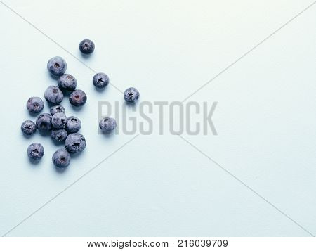 Blueberries on blue background. Blueberry border design. Fresh picked bilberries close up. Copyspace. Top view or flat lay