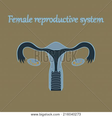 human organ icon in flat style female reproductive system