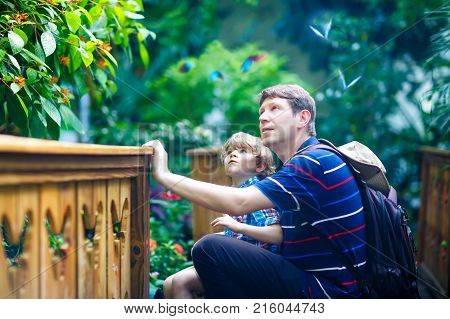 Father and preschool kid boy discovering flowers, plants and butterflies at botanic garden. Family, young man and son interested in biology. Active educational leisure with preschool kids in museum.