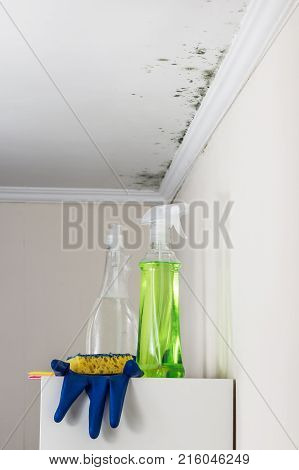 Ceiling Walls Living Image Photo