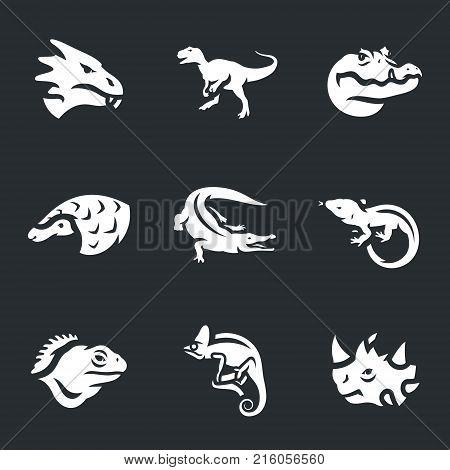 Dragon, dinosaur, croc, ironclad, alligator, lizard, chameleon, moloch.