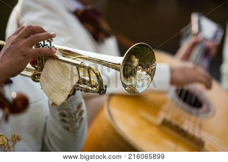Trumpet Performance At The Concert