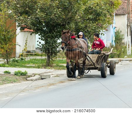 Sighisoara Romania October 08 2017 : Two young guys ride a horse-drawn cart in a suburb of Sighisoara in Romania