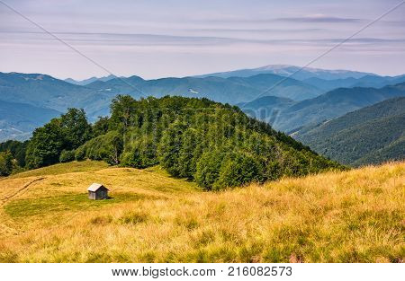 shed near the forest on a grassy slope. beautiful summer landscape in Carpathian mountains. Polonina Krasna mountain ridge is seen in a far distance