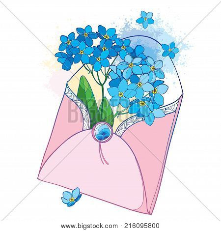 Vector bouquet with outline blue Forget me not or Myosotis flower in opened pink craft envelope isolated on white background. Wildflower Forget-me-not in contour style for romantic spring design.
