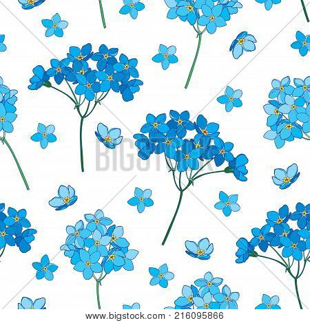 Vector seamless pattern with outline Forget me not or Myosotis flower, bunch and bud in blue on the white background. Floral pattern with Forget-me-not in contour style for spring design.