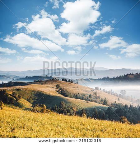 Awesome alpine highlands in sunny day. Location Carpathian national park, Ukraine, Europe. Picture of wild area. Scenic image of hiking concept. Superb tourism wallpapers. Explore the beauty of earth.