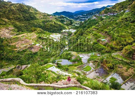 Batad Rice Terraces, UNESCO Heritage, Central Luzon on Philipines, Southeast Asia