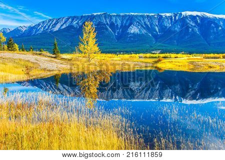 Rocky Mountains are reflected in the smooth water of the Abraham lake. Concept of ecological and active tourism