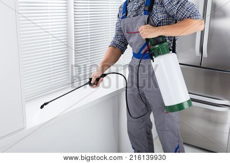 Midsection Of Worker Spraying Insecticide On Windowsill With Sprayer In Kitchen