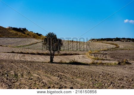 fertile soil prepeared for the new crops in the plain