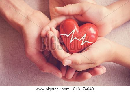 Adult And Child Hands Holiding Red Heart, Adult And Child Hands Holiding Red Heart, Health Care, Org