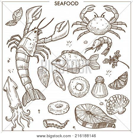 Seafood and fresh fish sketch icons for sea food restaurant or fisher market and chef cooking recipe. Vector set of lobster crab and squid, salmon or tuna and oyster mussels or squid and prawn shrimp with spices
