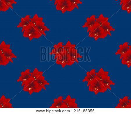Red Amaryllis on Indigo Blue Background. Christmas Day. Vector Illustration.