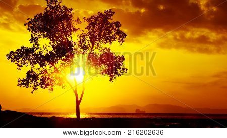 Beautiful sunrises and sunsets Beach photos with beautiful sunrises and sunsets in different countries