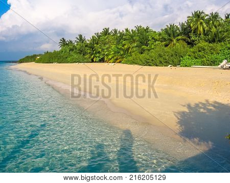 Maldives, Atoll, Indian Ocean. Palm trees on the white sand beach. Turquoise water of the lagoon. Asdu in Male North.