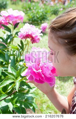 Pretty teenage girl smelling bouquet of pink rich blossoming Minuet peony flowers in sunny green park. Summertime multicolored outdoors vertical image.