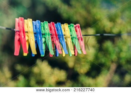 Colorful pegs hanging on clothesline on backyard
