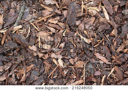 Close view of pulverised tree bark mulch used for horticulture to prevent weed growth.