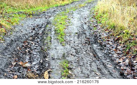 Rural dirty road at autumn cloud day, Russia.