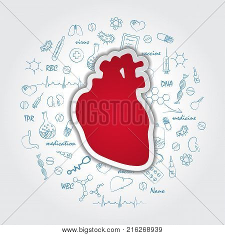 Creative Medical Care Background With Human Heart Anatomy. Medical Symbol Of Cardiology. Vector Illustration EPS.