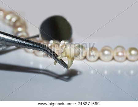 bad rotten tooth pulled out in the opposite forceps dental mirrors and dazzling pearls