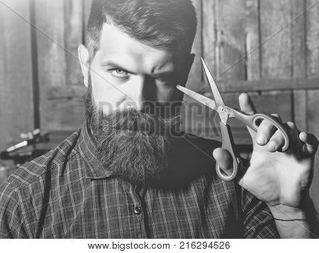 Bearded Man Barber With Scissors