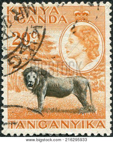 KENYA, UGANDA - CIRCA 1954: A stamp printed in Kenya, Uganda, shows a lion and a portrait of Queen Elizabeth II, circa 1954