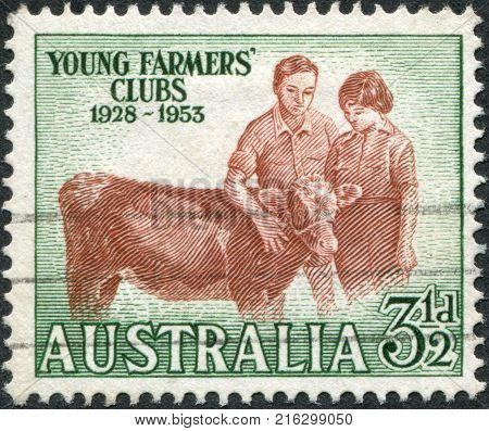 AUSTRALIA - CIRCA 1953: A stamp printed in Australia, dedicated to 25th anniversary of the club of young farmers, shows Boy and Girl with Calf, circa 1953