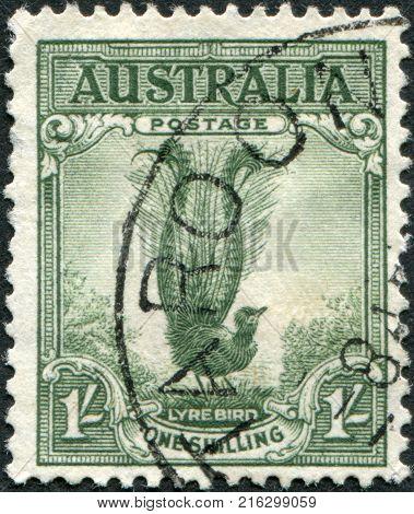 AUSTRALIA - CIRCA 1937: A stamp printed in Australia, shows the Superb Lyrebird (Menura novaehollandiae), circa 1937