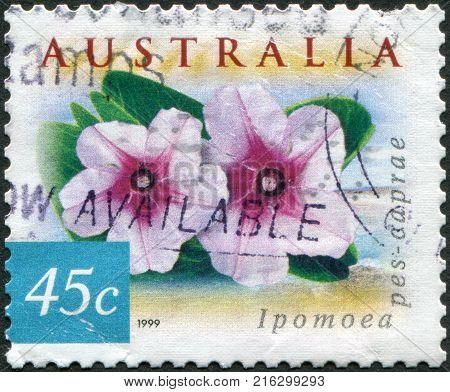 AUSTRALIA - CIRCA 1999: A stamp printed in Australia, shows the Ipomoea pes-caprae, circa 1999