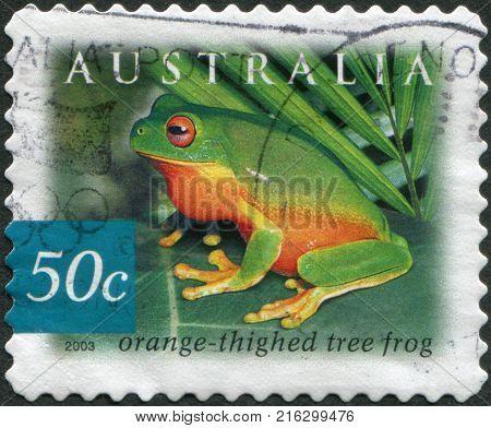 AUSTRALIA - CIRCA 2003: A stamp printed in Australia, shows the Orange-thighed Frog (Litoria xanthomera), circa 2003