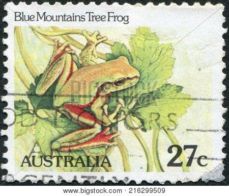 AUSTRALIA - CIRCA 1982: A stamp printed in Australia, shows the Blue Mountains Tree Frog (Litoria citropa), circa 1982