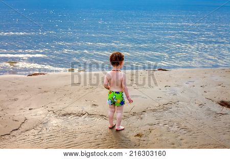 Cute Toddler Walks The Beach