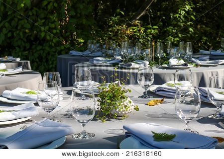 Tables sit ready in dappled sunlight for an outdoor event.