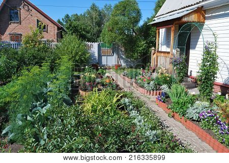 Country House in Omsk region Siberia Russia