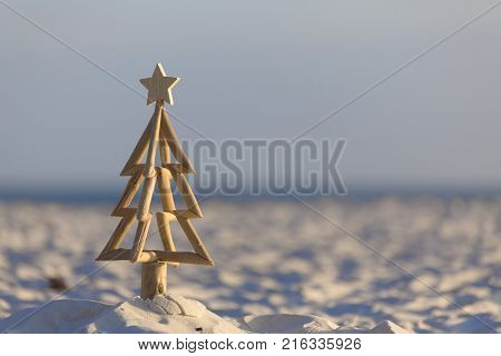 Christmas Tree On The Beach Early Morning Light