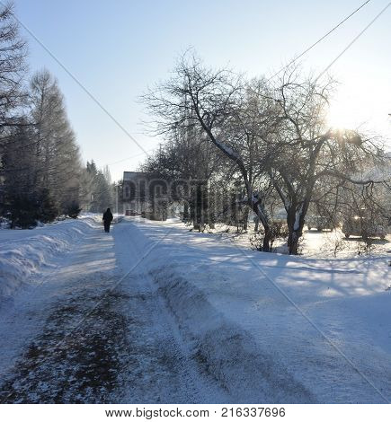 Street Red Path in city Omsk, Siberia Russia