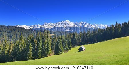 Panoramic view on green Alpine valley on snowy mountain background. Sunny summer day in Alps. Blue sky over picturesque mountains peaks. Classic mountain landscape.